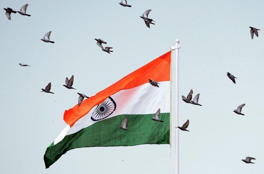 Paukščiai skrenda šalia Indijos vėliavos