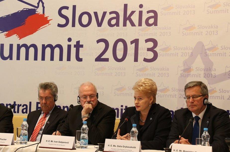 Dalia Grybauskaitė dalyvauja Vidurio Europos valstybių vadovų susitikime