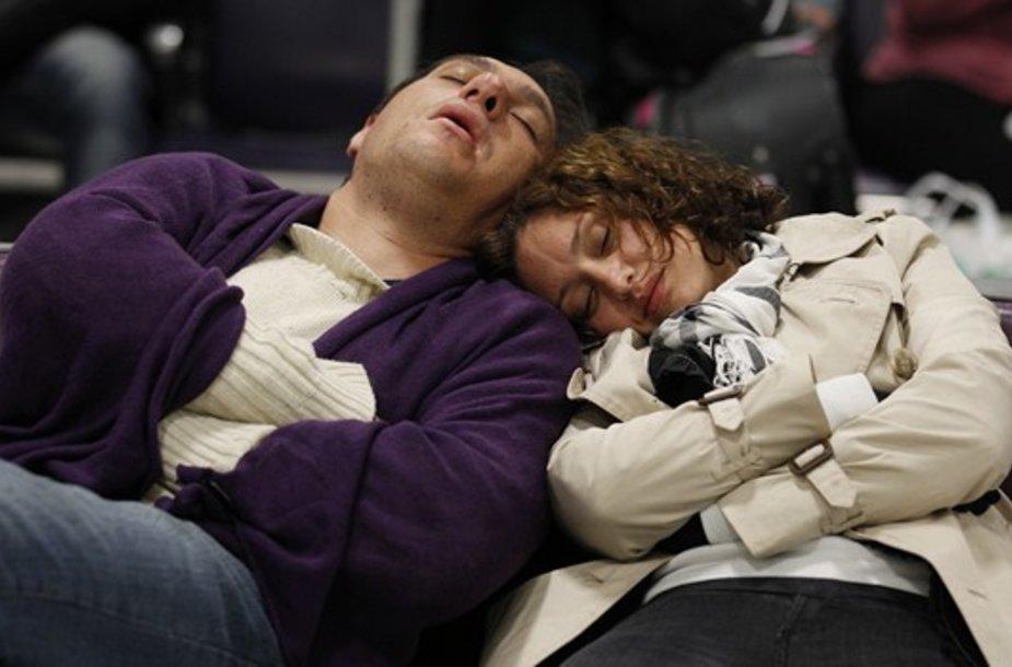 Mieganti porelė Edinburgo oro uoste