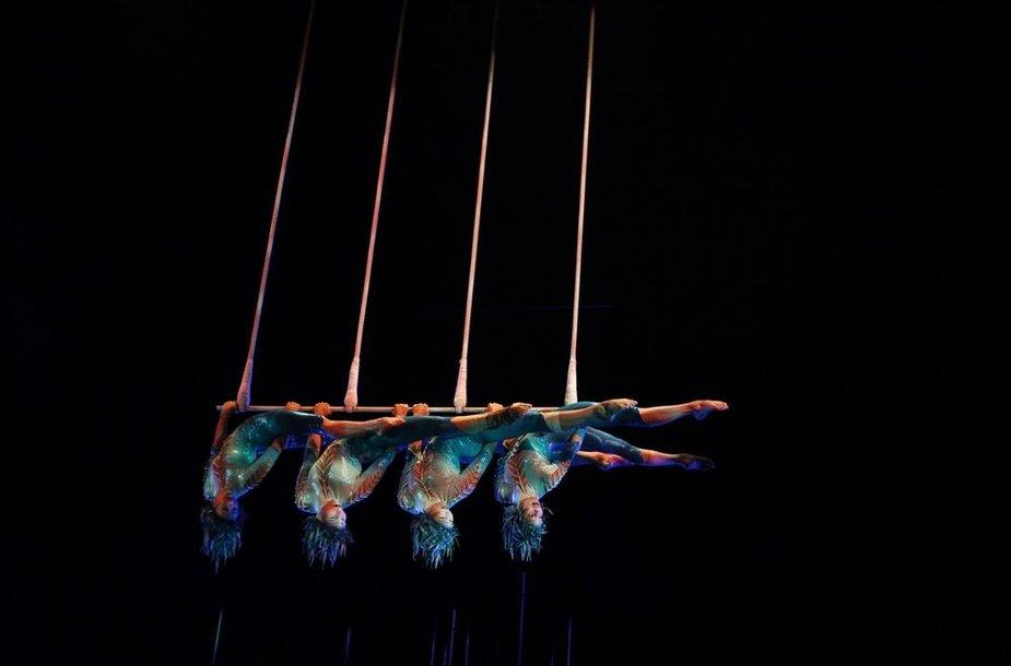 """Cirque Du Soleil"" šou ""Varekai"""