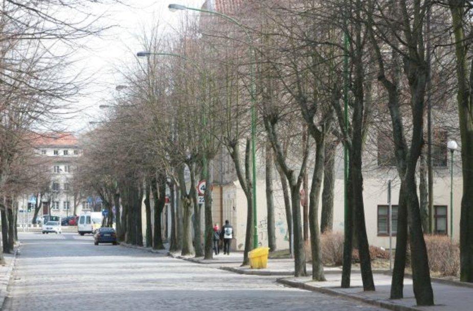 Daug metų remonto nemačiusi J.Janonio gatvė tapo pavojinga ir ratuotiems, ir pėstiesiems.