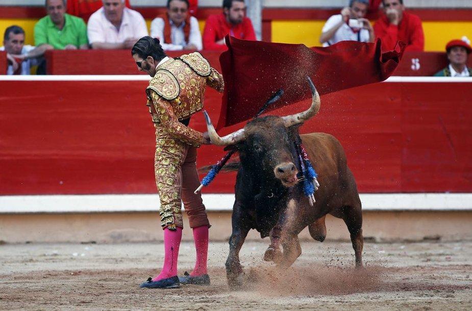 Saragosos festivalio korida