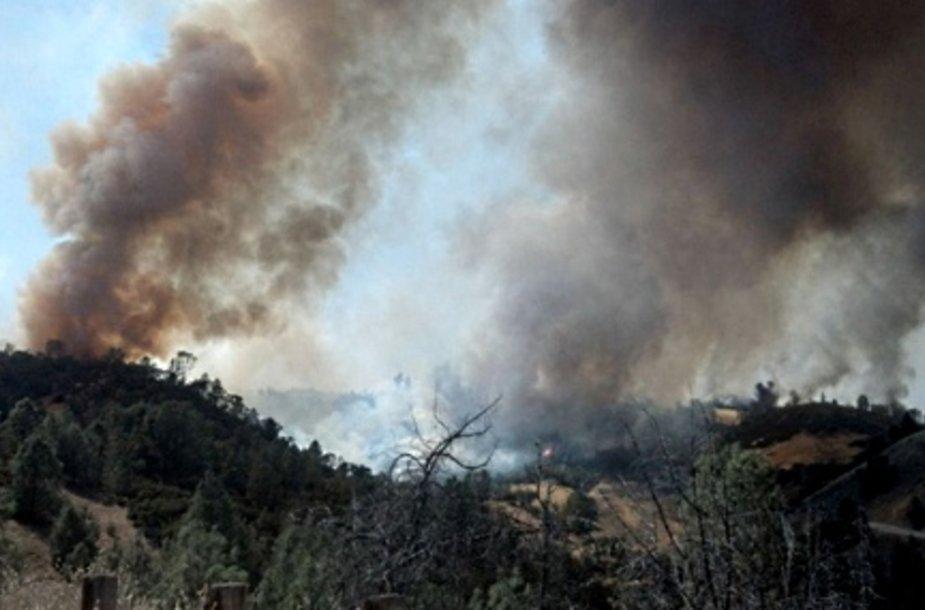 В Аризоне погибли 19 пожарных