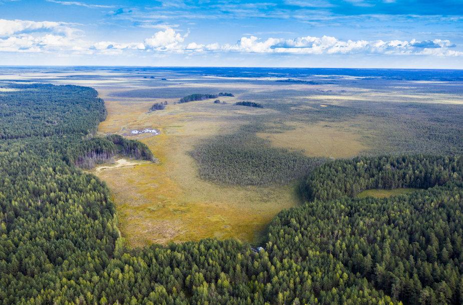 Čepkelių gamtinis rezervatas