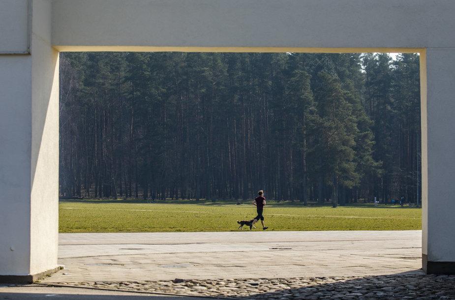 Šilčiausią metų dieną karantino metu ištuštėję Vilniaus parkai