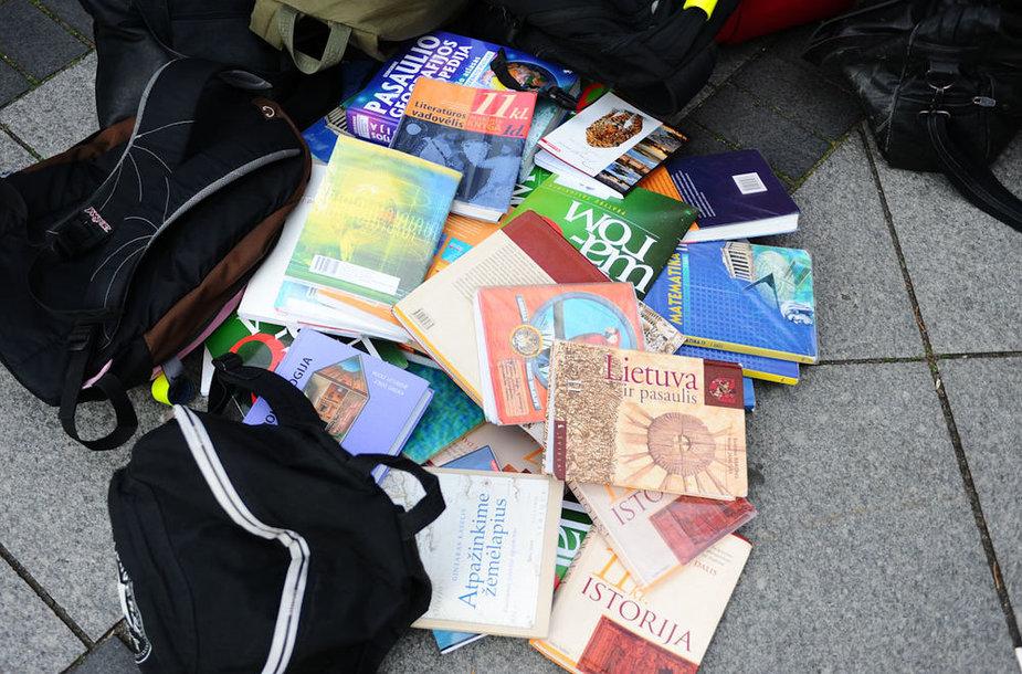 Mokiniai piketus surengė prie Seimo, Vyriausybės ir Švietimo ir mokslo ministerijos