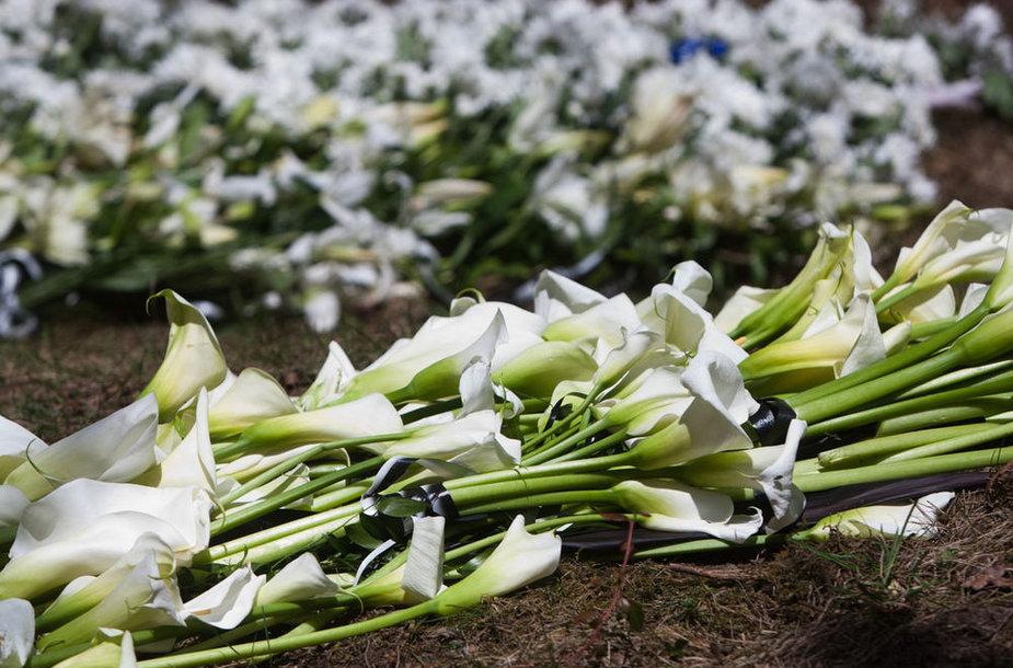 Vytauto Šapranausko laidotuvės