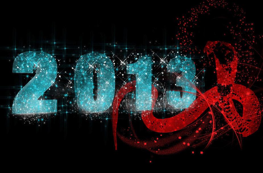 2013 metai