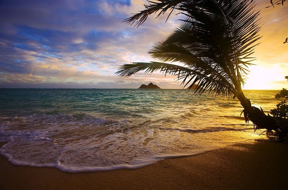 Lanikai paplūdimys Havajuose
