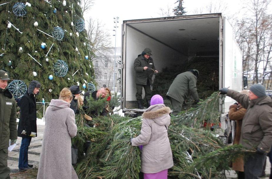 Šalies gyventojai jau parsinešė Kalėdas į savo namus