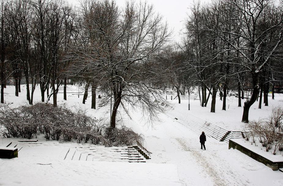Vilnius Reformatų skveras žiemą