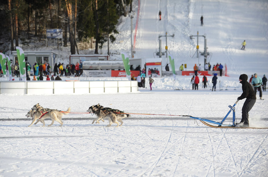 """Ignalinoje – """"LTeam"""" žiemos olimpinis festivalis"""