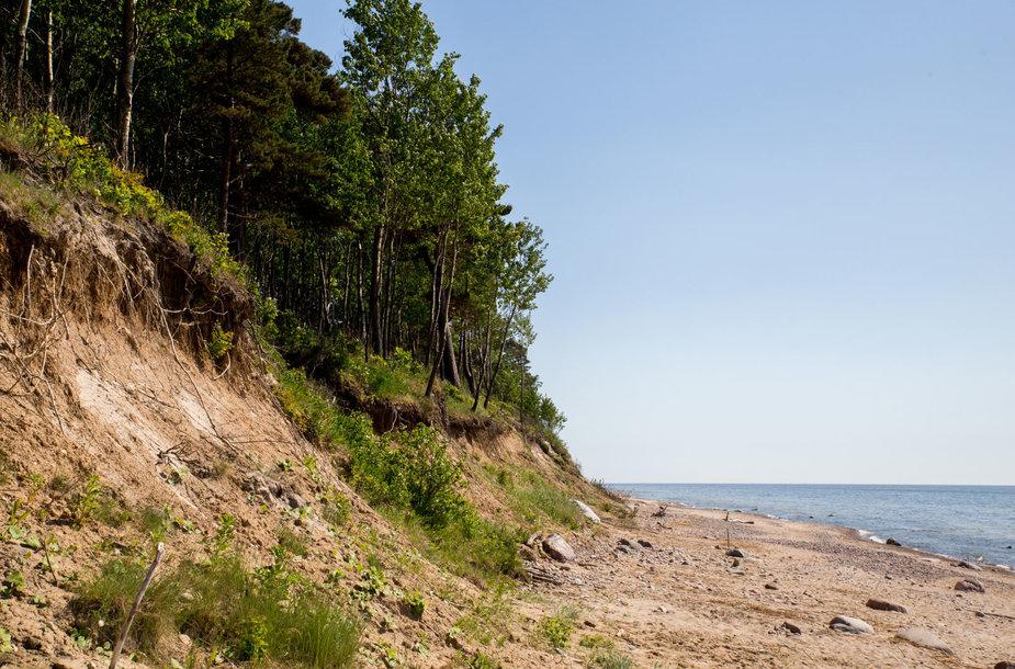 Karklės paplūdimio gamta
