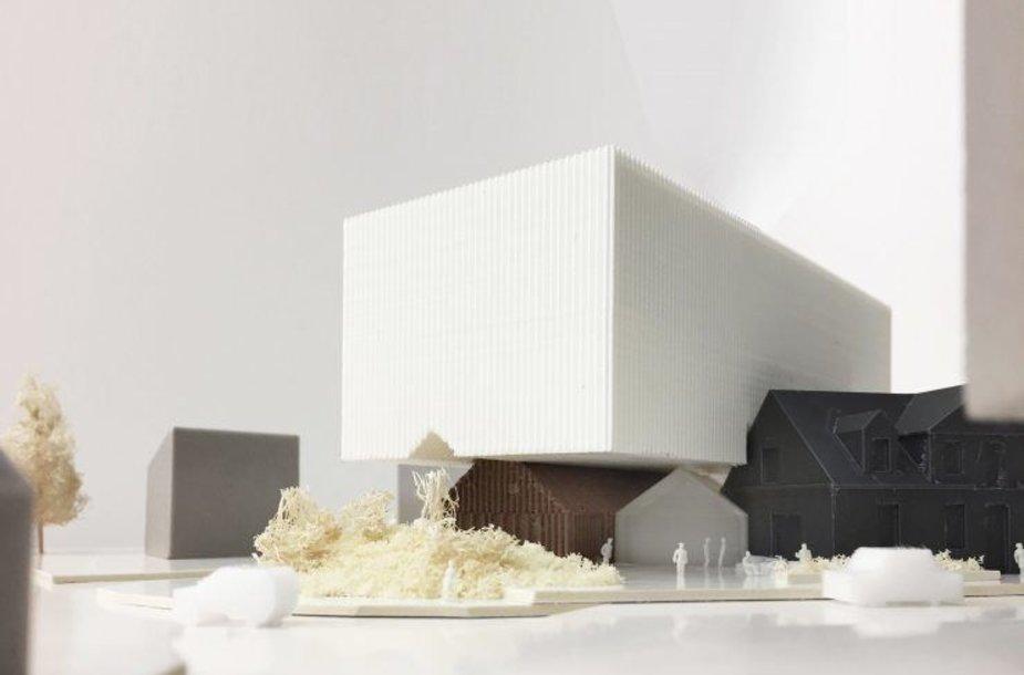 Architektūrinio konkurso pasiūlymai