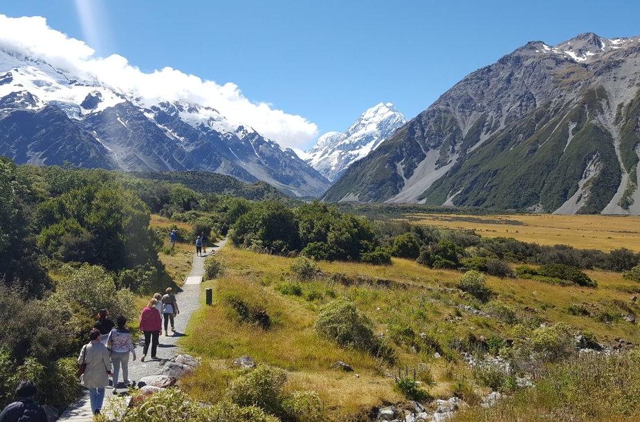 Agnė Dabravolskienė Naujojoje Zelandijoje
