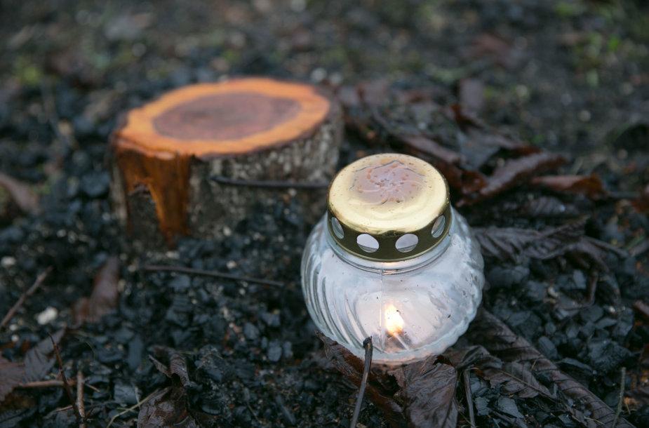 Vėlinių žvakė šalia Birutės g. 18C namo