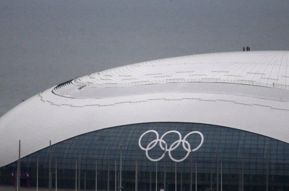 Sočis – 2014 metų žiemos olimpinių žaidynių miestas