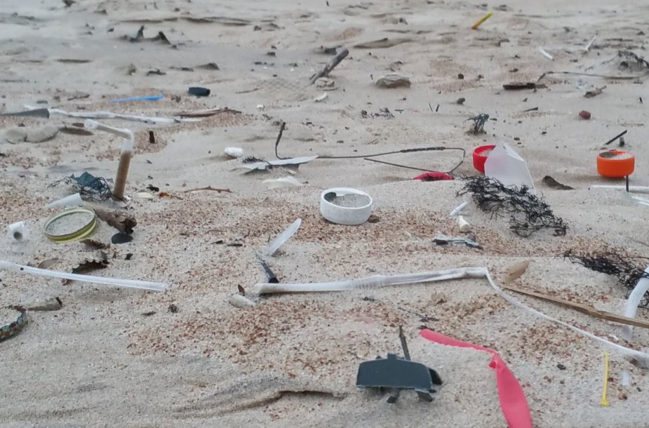 Labai liūdna, kad gamta užteršta plastiko šiūkšlėmis.