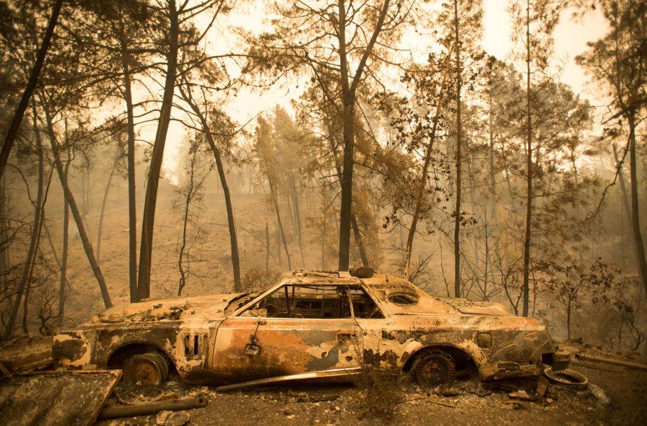 Miškų gaisrai Kalifornijos valstijoje