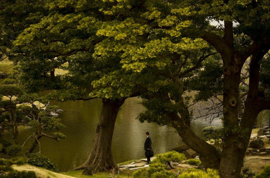 Verslininkas parke Tokijuje