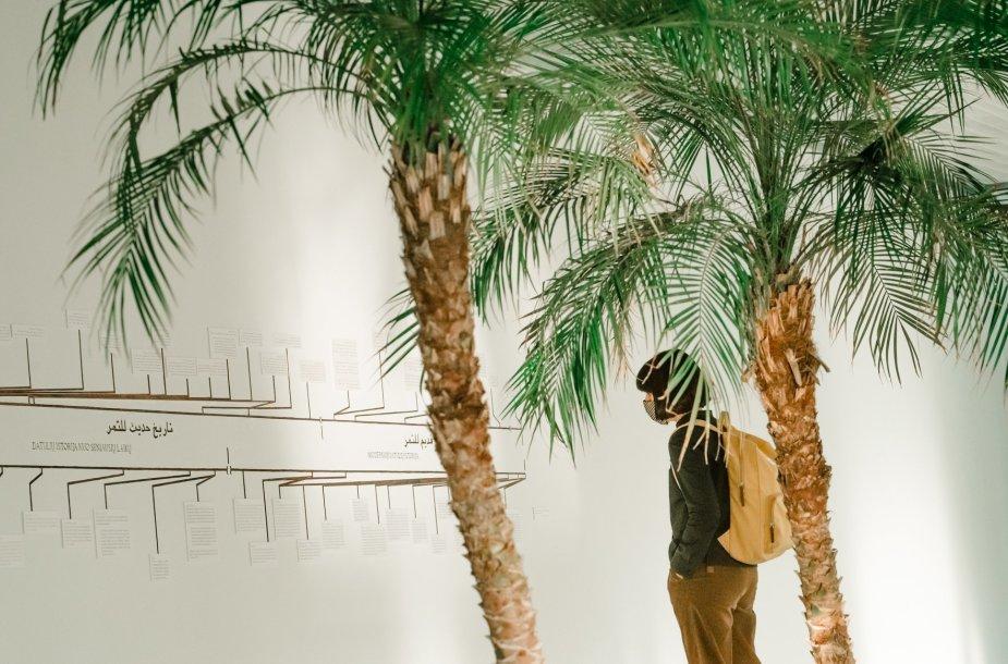 """Michaelio Rakowitzo paroda """"Sugrįžimas"""" Šiuolaikinio meno centre."""