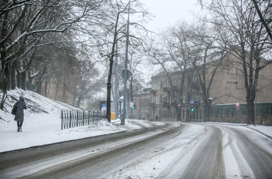 Snygis Vilniuje