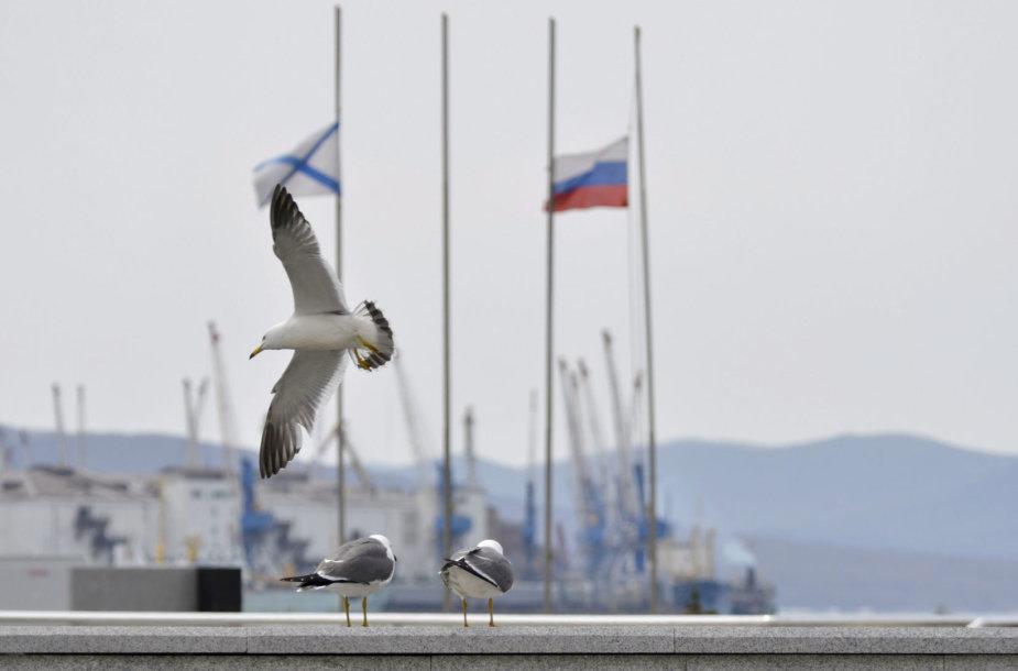Vladivostoko uostas