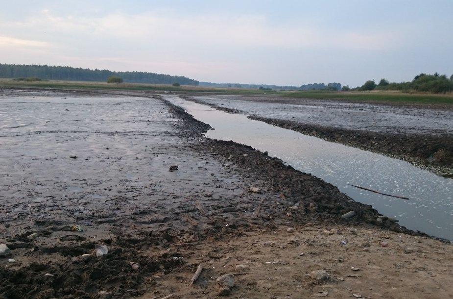 Taip dabar atrodo Daugidonių kaimo tvenkinys