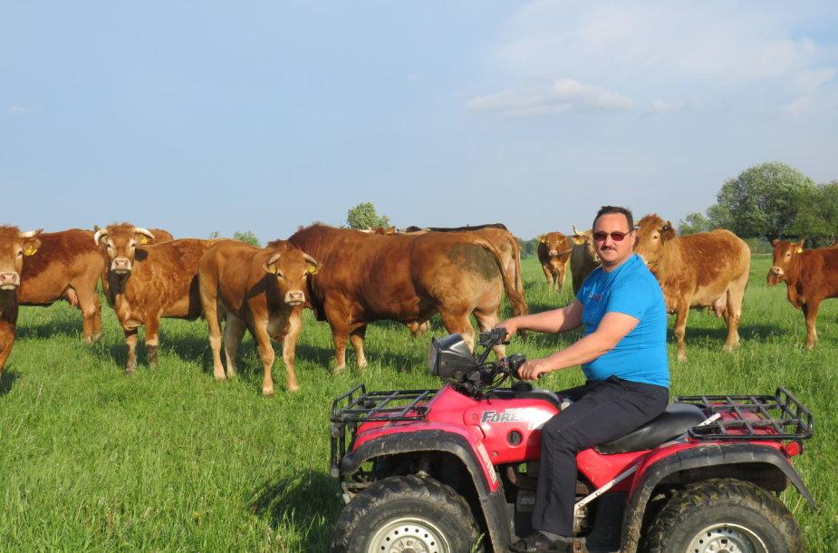 Vinco Bagdono mėsinių galvijų ūkyje