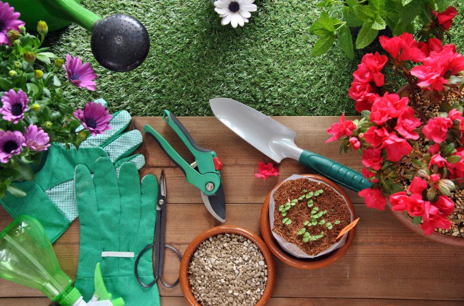 Sodo ir daržo reikmenys.