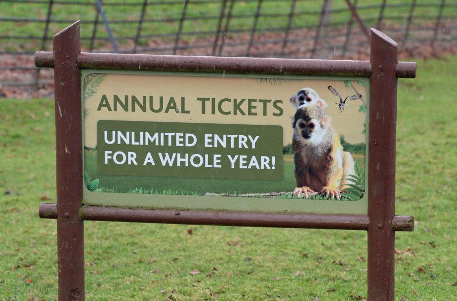 Jungtinėje Karalystėje per gaisrą safario parke žuvo 13 beždžionių