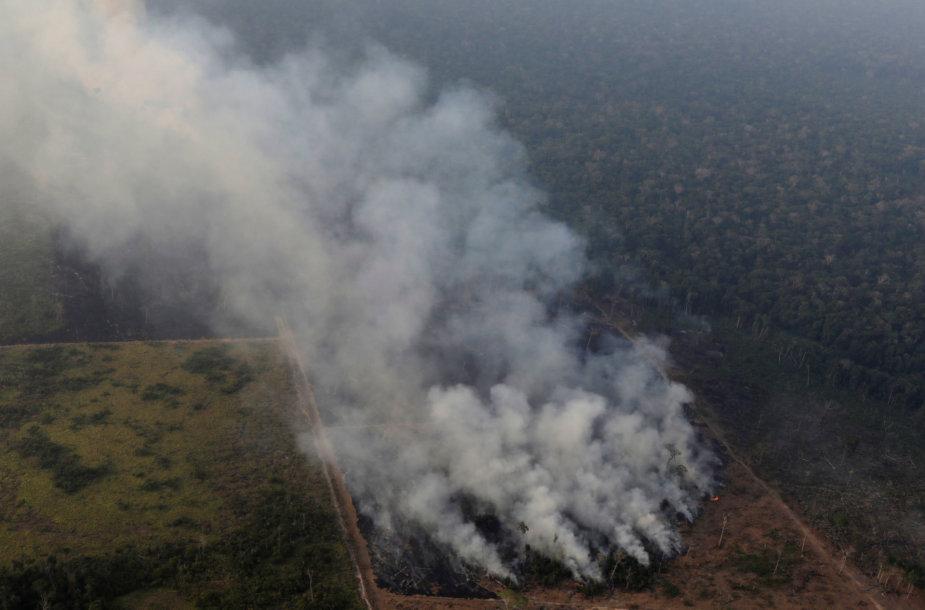 Gaisrai Amazonijoje