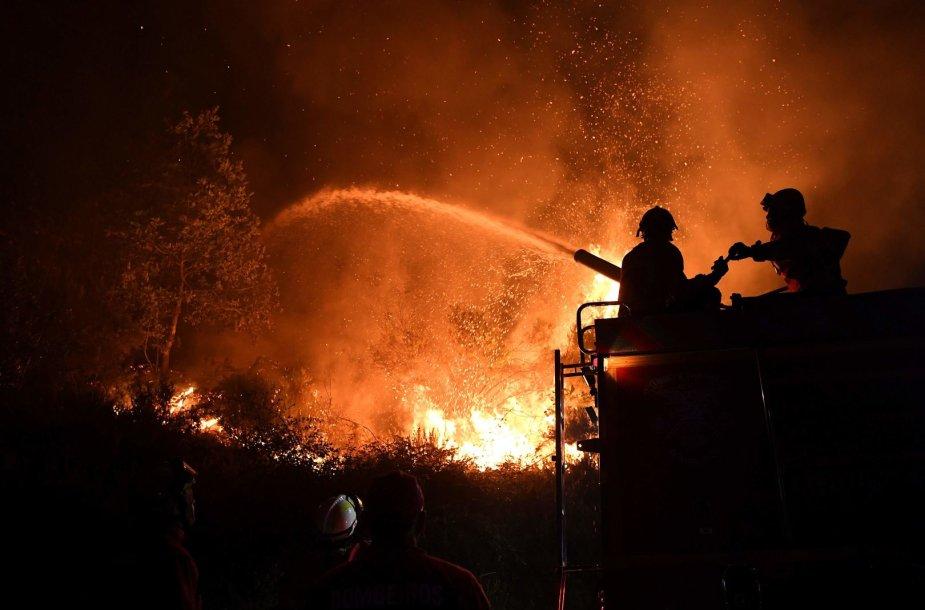 Portugalijos ugniagesiai kovoja su gaisru.