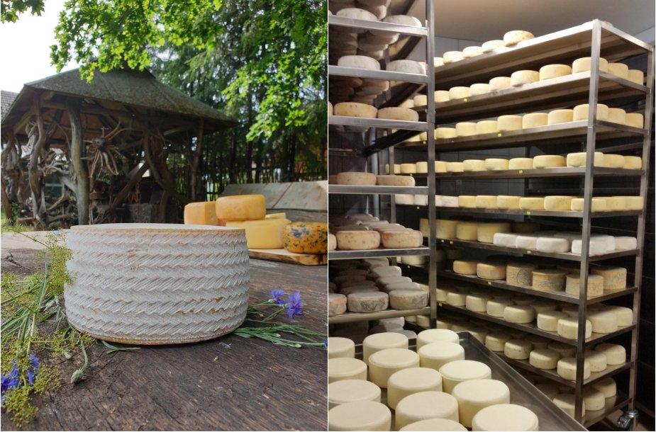 Sūrinė įsikūrusi Jurbarko rajone