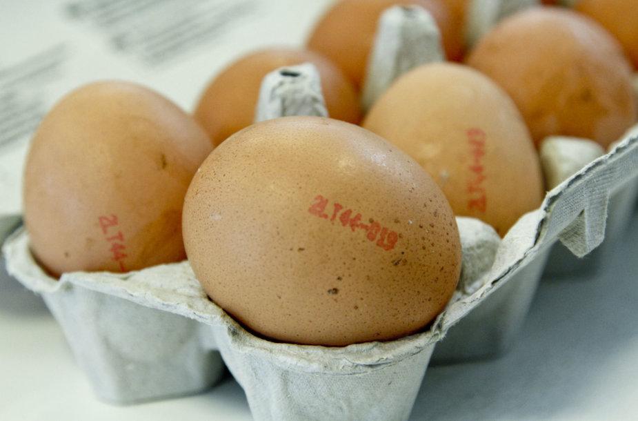 Kiaušinių žymėjimo pavyzdys