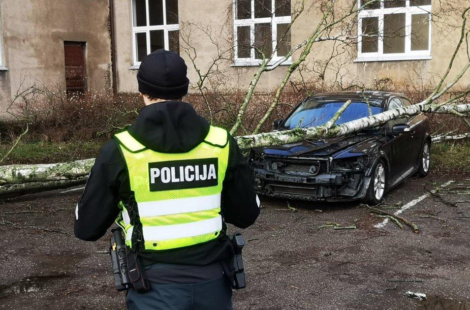 """Klaipėdoje vėtra nulaužė ir užvertė beržą ant """"Volvo"""" automobilio"""