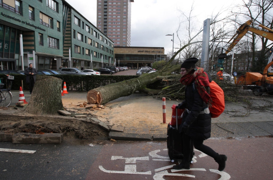 Audros padariniai Nyderlanduose