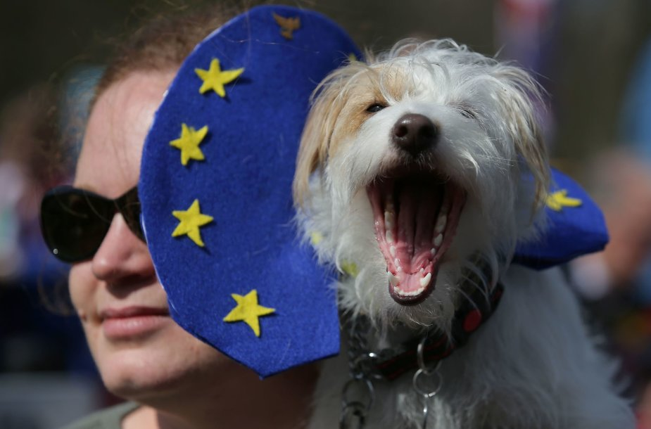 Demonstracija už ES