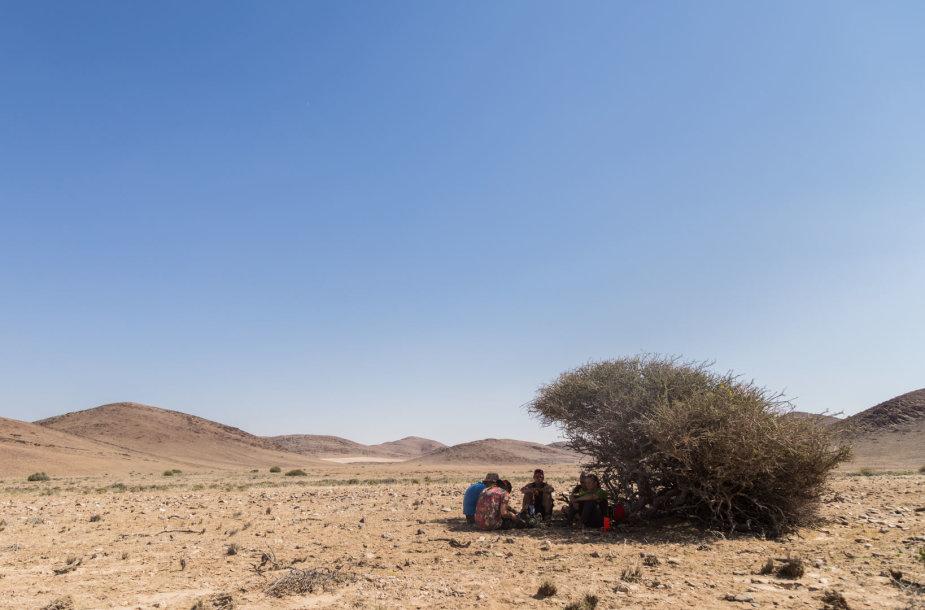 Kai aplinkui nėra jokio šešėlio, o temperatūra siekia 45 C, nuo saulės tenka slėptis krūmuose