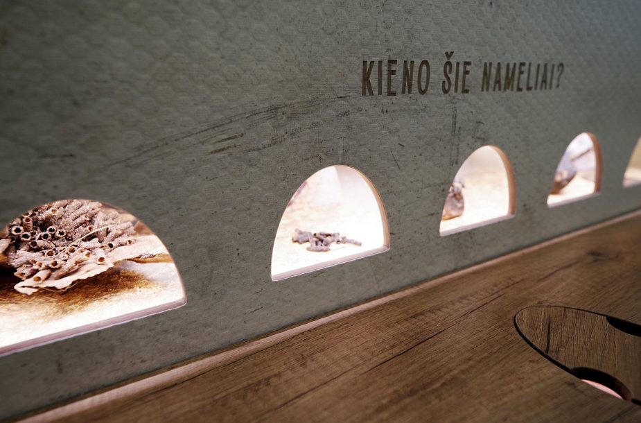 Viešvilės rezervato lankytojų centro ekspozicija