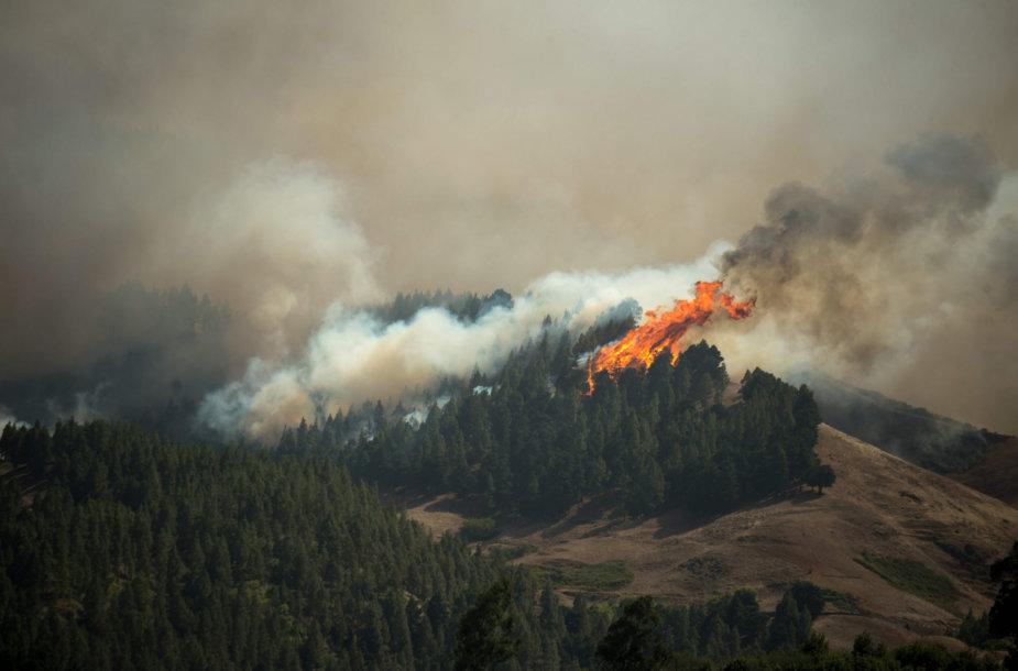 Miškų gaisrai Gran Kanarijoje