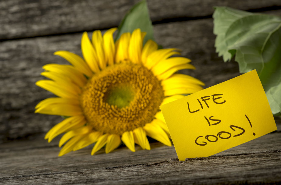 Gyvenimas yra gražus
