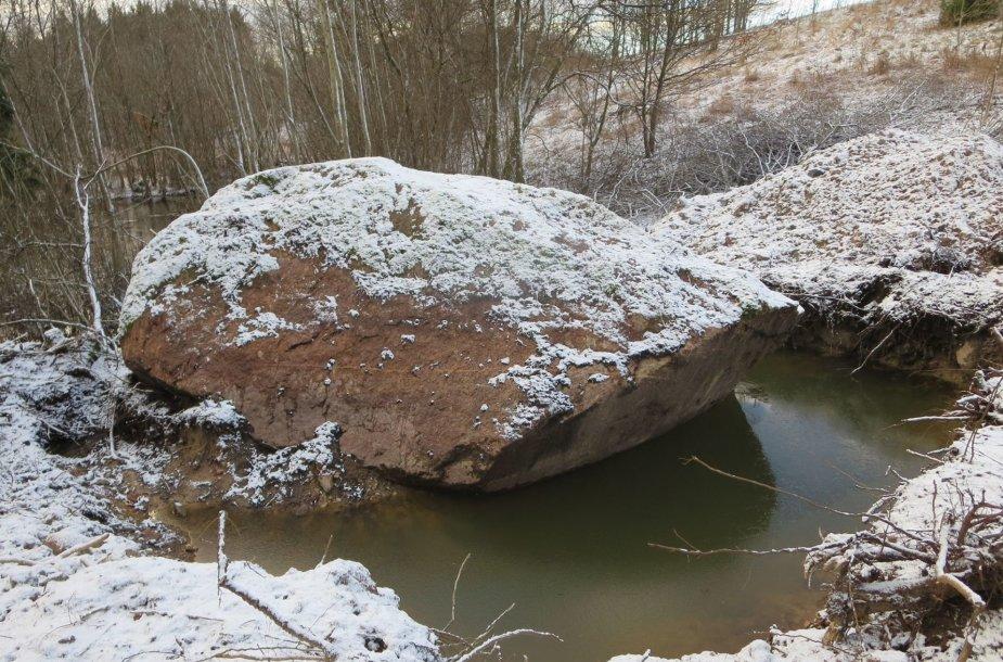 Skuodo rajone, Juknaičių kaime, visai šalia legendinės Apuolės, iš žemių iškastas gigantiškas akmuo. Ilgus metus vietos gyventojai apie tūnantį milžiną galėjo spėti tik matydami dalį jo silueto krūmynuose.