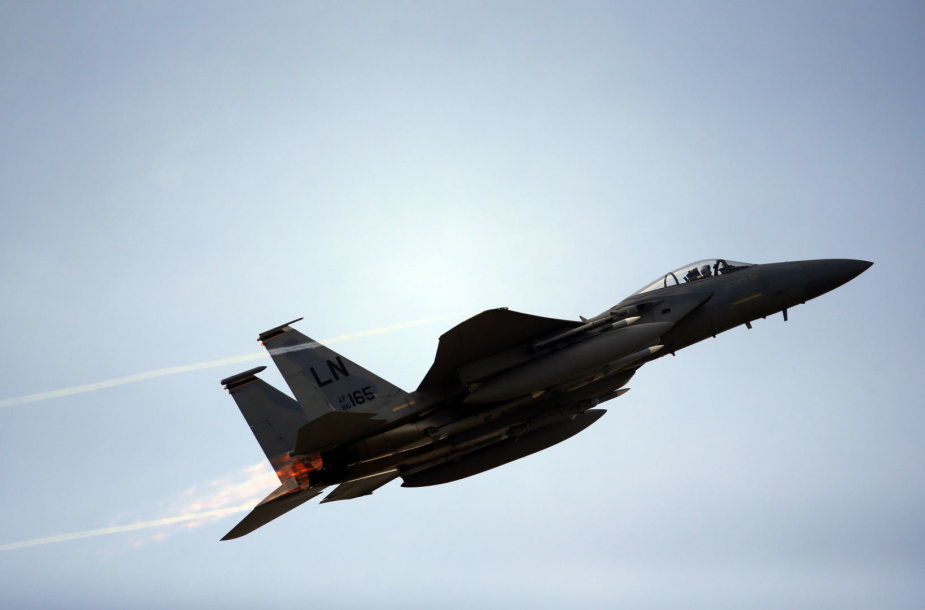 """Naikintuvas """"JAS-39 Gripen"""""""