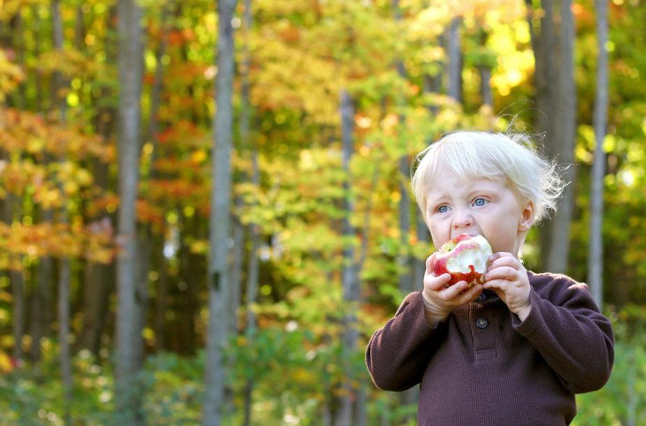 Obuolį valgantis vaikas
