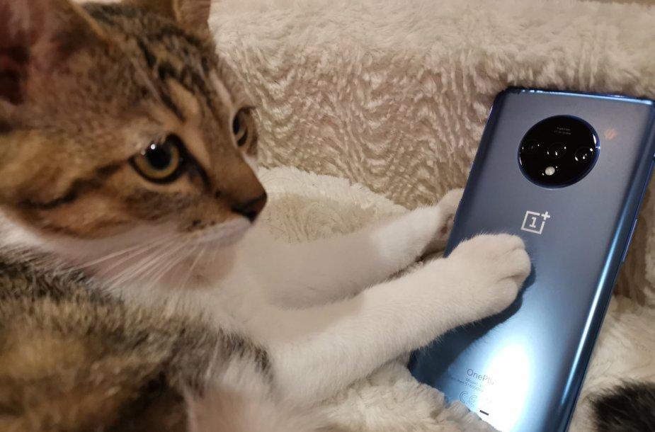 """OnePlus 7T"" išmanusis telefonas"