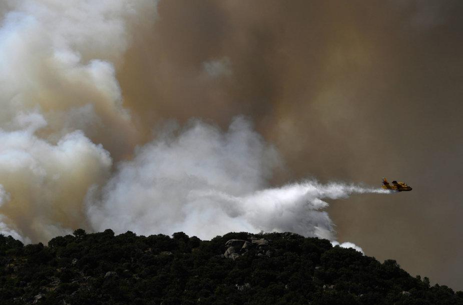 Miško gaisras Ispanijoje