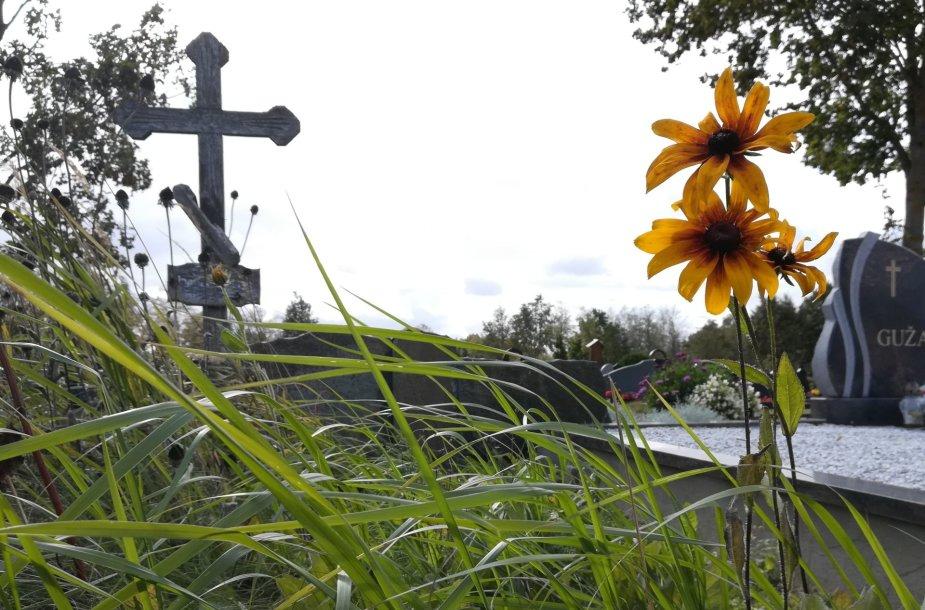 Ginkūnų ir Daušiškių kapinės