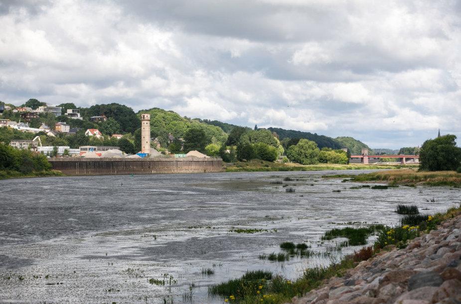 Upės vaga