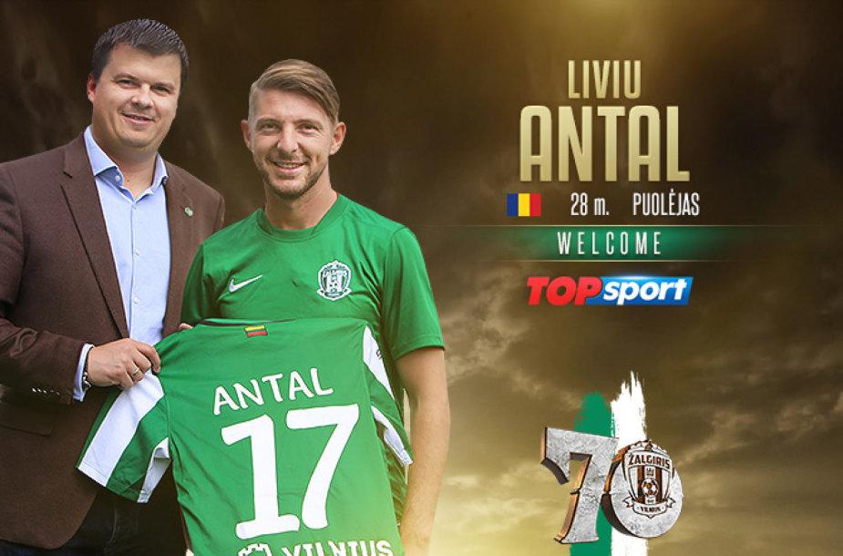 Livis Antalis